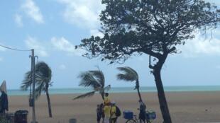 Apesar da tradição petista do Ceará, eleitores de Bolsonaro são numeros e podem ser vistos em diferentes bairros de Fortaleza