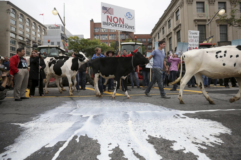 加拿大农民9月29日在渥太华游行,反对TPP协定向澳大利亚及新西兰奶产品让步,Ottawa, Canada, 29/09/2015.