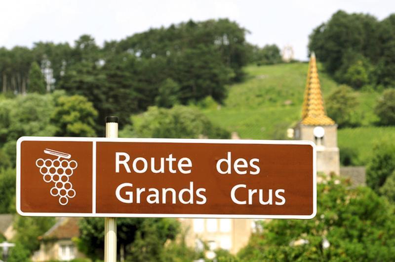 勃艮第特級佳釀旅遊之路有64公里長