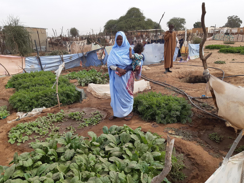 Le jardin maraîcher des femmes de Kraa Lahmaar en Mauritanie.