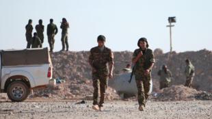 Les combattants des Forces démocratiques syriennes au nord de Raqqa, le 6 novembre 2016.