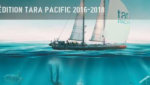 L'expédition Tara Pacific (capture d'écran).