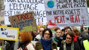 Марш за климат в Париже, 8 декабря 2018 года.