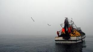 Des pêcheurs au large des côtes du Chili.