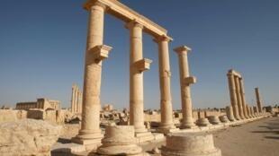 Les jihadistes du groupe Etat islamique ont pris leurs quartiers dans la ville de Palmyre et sa cité antique, massacrant des centaines de personnes.