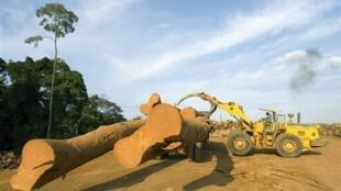 UNIDO avança que o continente africano tem um longo caminho a percorrer no setor da industrialização
