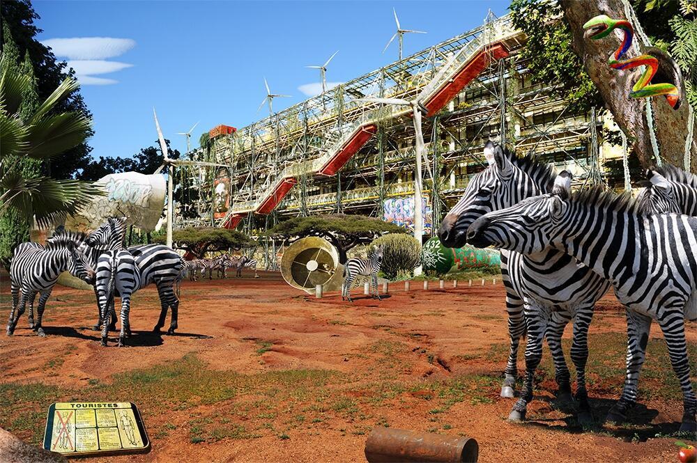 """""""Paris, Pompidou Savanes"""", 2011."""