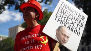 Steve Bray UK Brexit Russia