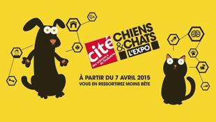 Exposição sobre cães e gatos em La Villette, Paris acontece dos dias 7 de maio até 28/02/2016.