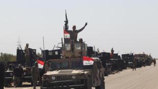 Les forces armées irakiennes près de la ville de Fallouja, le 30 mai 2016.