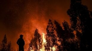 Incêndios voltam a fustigar Portugal