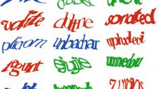 Afin d'éviter le piratage automatique des sites internet et les spam, les Captchas imposent aux internautes de recopier une série de lettres et de chiffres dont les caractères sont déformés.