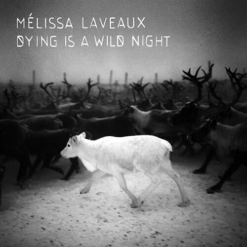 «Dying Is A Wild Night», le deuxième album de Mélissa Laveaux.