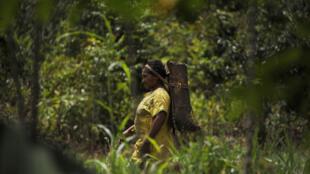 Em 40% dos casos, as vítimas são oriundas de populações indígenas.