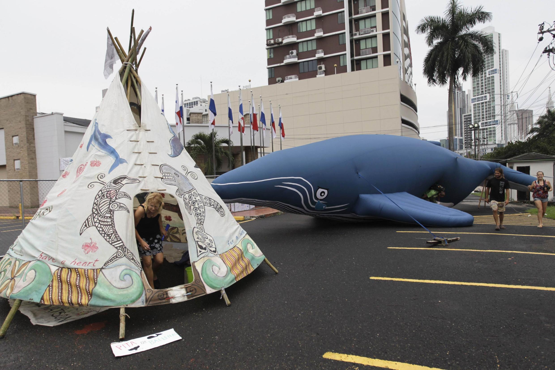 Giới bảo vệ môi sinh bày tỏ bất bình trước nơi họp của Ủy ban Cá voi Quốc tế tại Panama City. Ảnh ngày 04/7/2012 . Tại đây Hàn Quốc thông báo việc bãi bỏ lệnh cấm đánh bắt cá voi tồn tại từ 26 năm qua.