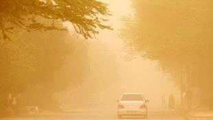 برای شنیدن توضیحات جلال ایجادی، کارشناس محیط زیست بر روی تصویر کلیک کنید
