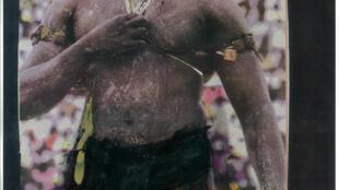 Wani dan kokowar Nahiyar Afrika