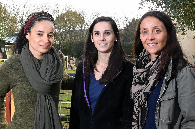 """Lamya Essemlali, Lorane Mouzon e Perrine Crosmary, co-presidentes do grupo de ONGs """"Rewild"""", posam para uma foto no Zoológico de Pont-Scorff, no oeste da França, em 27 de dezembro de 2019. -"""