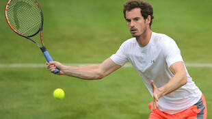 Andy Murray tenta repetir a vitória de 2013 em Wimbledon.