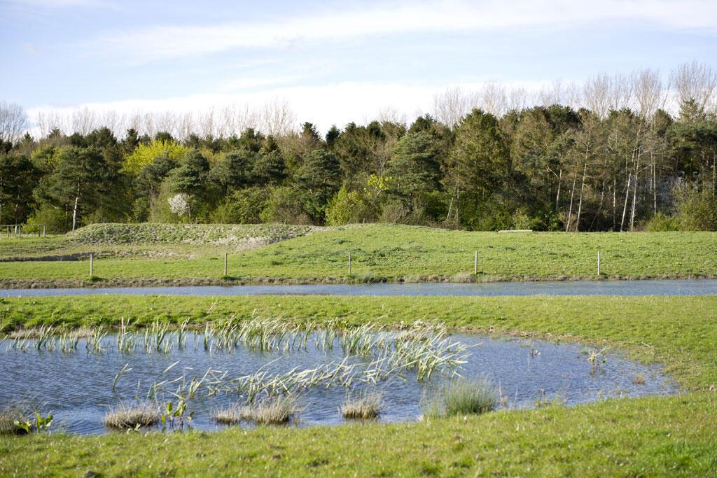 Michael a créé des points d'eau sur ses terres de Burwash Manor Farm pour offrir un habitat naturel pour les insectes et les amphibiens.