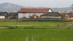 Một vùng nông thôn ở Bắc Triều Tiên, bên dòng sông Áp Lục (Yalu) giáp thành phố Đan Đông (Trung Quốc). Ảnh chụp ngày 19/06/2015.
