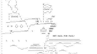 Les hackers de Lulz Security ont parvenus à s'introduire sur le site du Sénat américain et de la CIA.