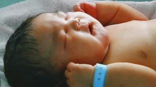 taxa de natalidade covid