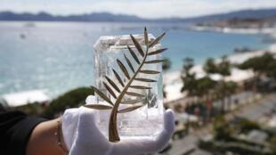 La Palme d'Or à Cannes lors de la 72e édition du festival le 13 mai 2019.