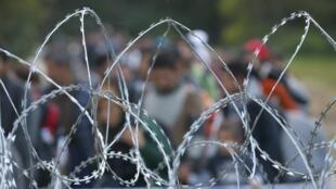 Refugiados chegam à fronteira com a Hungria