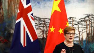 澳大利亚外交部长佩恩资料图片