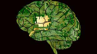 A sinapse artificial é feita de materiais orgânicos de baixo custo, todos sintéticos, mas formados sobretudo por hidrogênio e carbono, o que significa que o componente é compatível com a química cerebral.