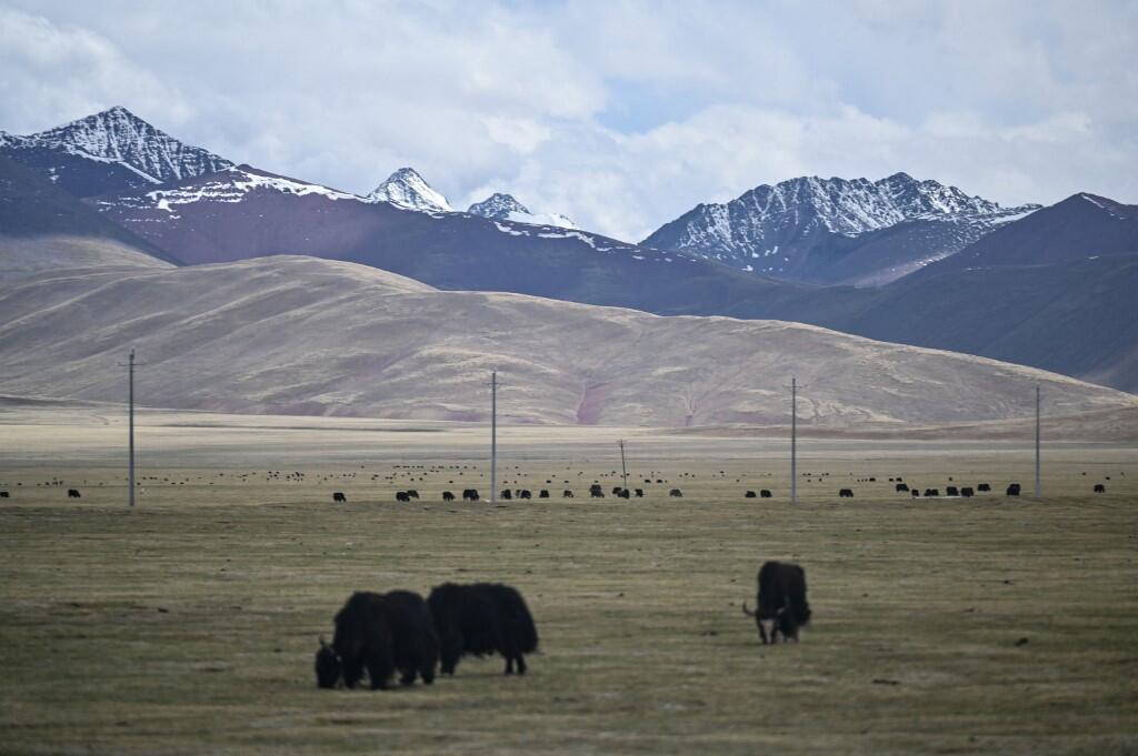 AFP chú thích: Đồng cỏ Đương Hùng, cách thủ phủ Lhassa 180km, vùng tự trị Tây Tạng được chụp trong một chuyến tham quan truyền thông do chính phủ Trung Quốc tổ chức ngày 02/06/2021.