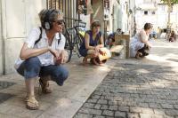 Авиньон 2013: Remote Avignon - Rimini Protokoll / Stefan Kaegi