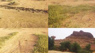 Autrefois, ce site était fortement boisé. Une méthode traditionnelle de récupération des champs dénudés par le vent permet de lutter contre l'érosion des sols.