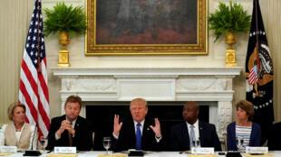 Tổng thống Mỹ Donald Trump thảo luận với các thượng nghị sĩ Cộng Hòa tại Nhà Trắng về bảo hiểm y tế, ngày 19/07/2017.