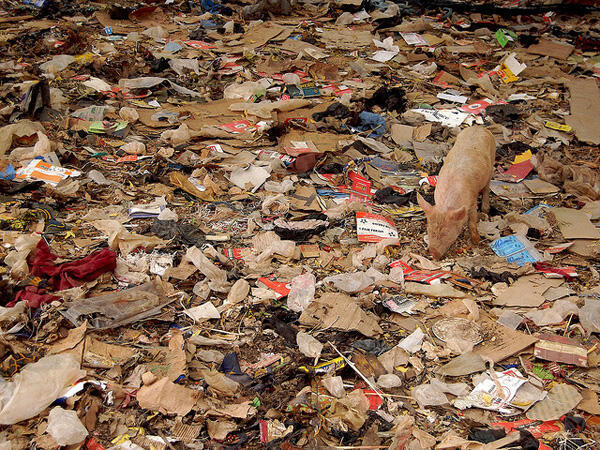 Au Gabon, les Librevillois produisent 350 tonnes de déchets par jour.