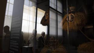 Musée royal Tervuren