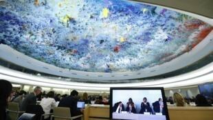 Phiên họp của Nhóm Công tác Hội đồng Nhân quyền Liên Hiệp Quốc tại Geneve, Thụy Sĩ, ngày 29/10/2013