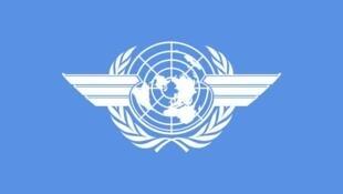 Tổ chức Hàng không Dân dụng Quốc tế ( International Civil Aviation Organization/ICAO)