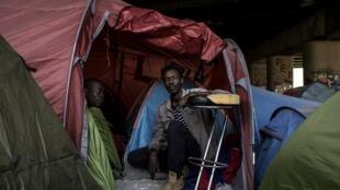 A tempranas horas de la mañana, unos 500 policías, bomberos y agentes de la alcaldía despertaron a los migrantes y les pidieron que dejaran sus tiendas de campaña.