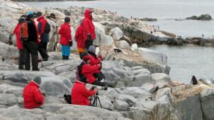 Cientistas que estudam a Antártida temem que o número crescente de turistas represente uma ameaça para o continente branco.