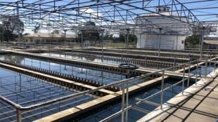 A Suíça vai investir na construção de sistemas de abastecimento de água em Moçambique.