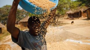 Uno de los Objetivos de Desarrollo del Milenio es reducir a la mitad la proporción de personas en pobreza extrema.