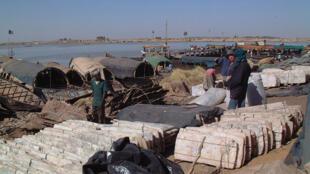 Les plaques de sel de Taoudeni, déchargées sur le port de Mopti, au Mali.