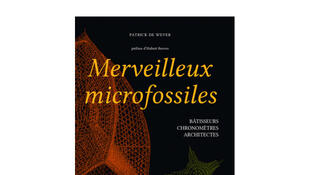 Merveilleux Microfossiles.