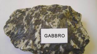 Échantillon de gabbro, une roche magmatique