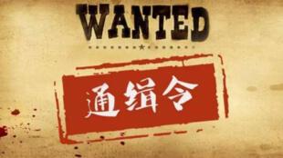 图为中国网络关于国际刑警红色通缉令图片