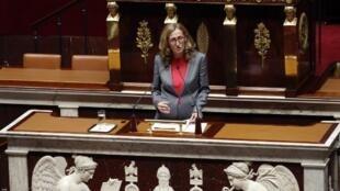 Министр юстиции Николя Беллюбе представляет проект закона о «морализации публичной жизни» перед Национальным собранием 24 июля 2017 года.