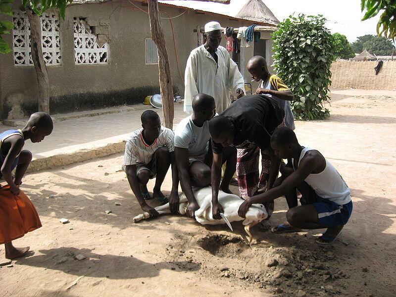 Tabaski in Kounkane, Upper Casamance