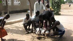 Fête de Tabaski au Sénégal. L'Aïd el-Kebir est ainsi nommé dans les pays d'Afrique de l'ouest francophone mais aussi au Nigeria.
